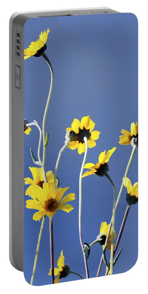 Daisy Portable Battery Charger featuring the digital art Happy Daisies by Sharon Foster