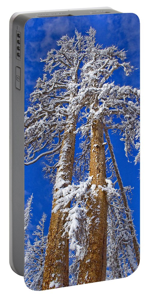 High Hopes Portable Battery Charger featuring the photograph High Hopes by Chris Brannen