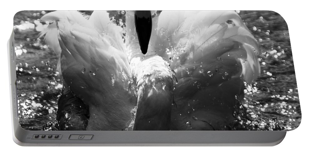 Flamingo Portable Battery Charger featuring the photograph In The Water by Angel Ciesniarska