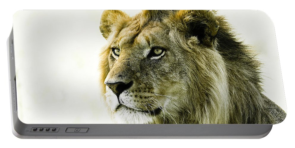Lion Portable Battery Charger featuring the photograph Intensity by Michele Burgess