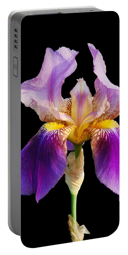 Flower Portable Battery Charger featuring the photograph Iris 5 by Michael Peychich