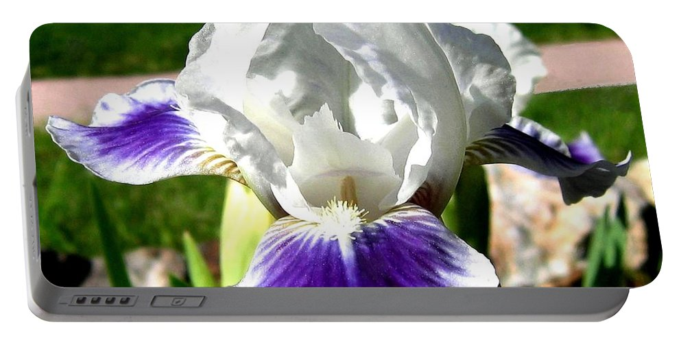 Iris Portable Battery Charger featuring the photograph Iris Elegance by Will Borden