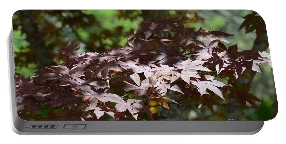 Japanese Maple Portable Battery Charger featuring the photograph Japanese Maple by Maria Urso