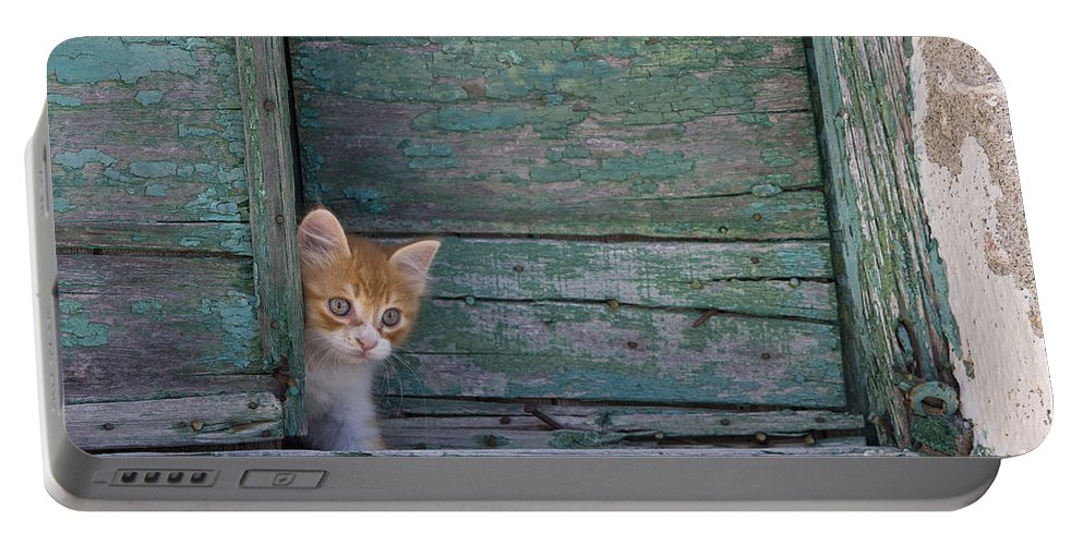 Cat Portable Battery Charger featuring the photograph Kitten Peeking Out by Jean-Louis Klein & Marie-Luce Hubert