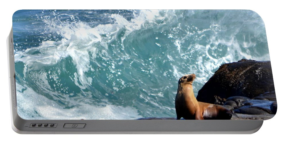 Portable Battery Charger featuring the photograph La Jolla Cove by Dean Ferreira