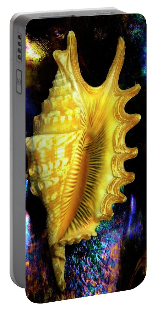 Frank Wilson Portable Battery Charger featuring the photograph Lambis Digitata Seashell by Frank Wilson