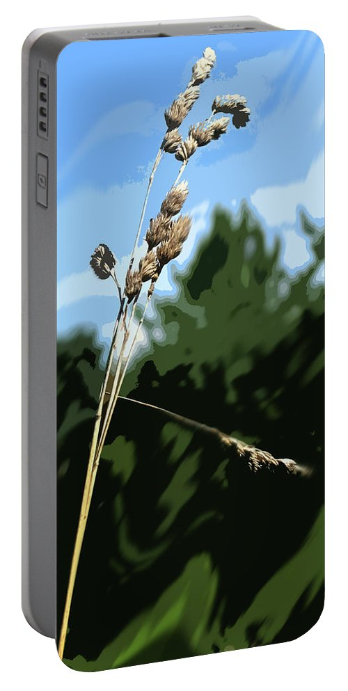 Straw Portable Battery Charger featuring the photograph Last Straw by Ian MacDonald