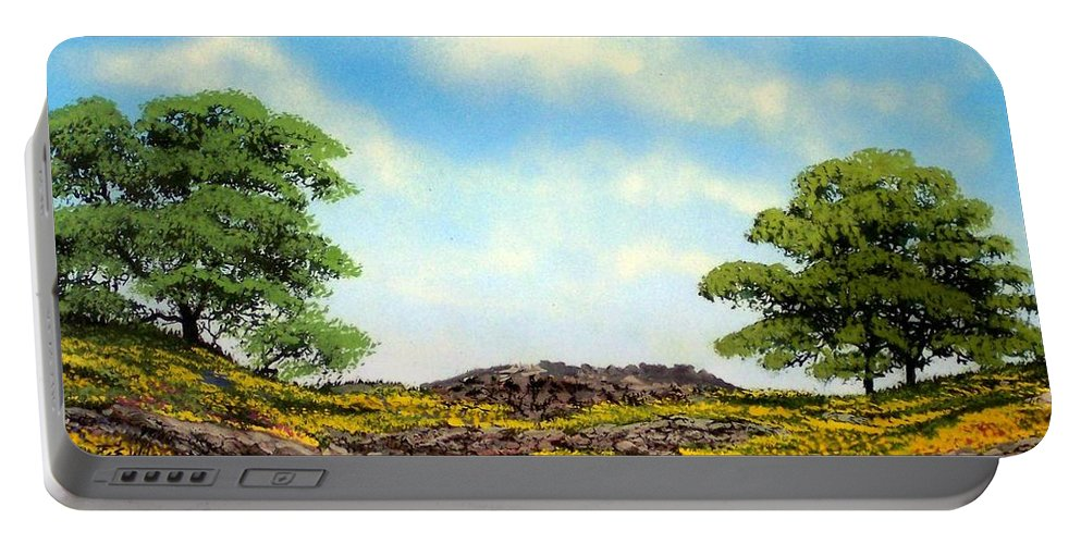 Wildflowers Portable Battery Charger featuring the painting Lava Rock And Flowers by Frank Wilson