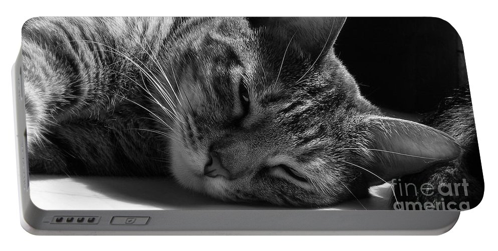 Cat Portable Battery Charger featuring the photograph Lazy Afternoon by Maria Bonnier-Perez