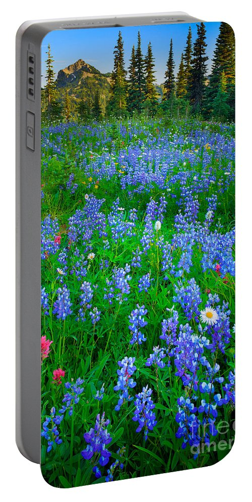America Portable Battery Charger featuring the photograph Lupine Cornucopia by Inge Johnsson