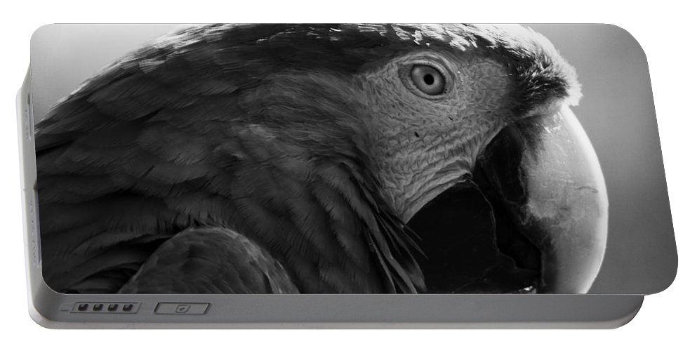 Macaw Portable Battery Charger featuring the photograph Macaw by Angel Ciesniarska