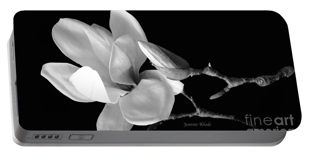 Magnolia In Monochrome Portable Battery Charger featuring the photograph Magnolia In Monochrome by Jeannie Rhode