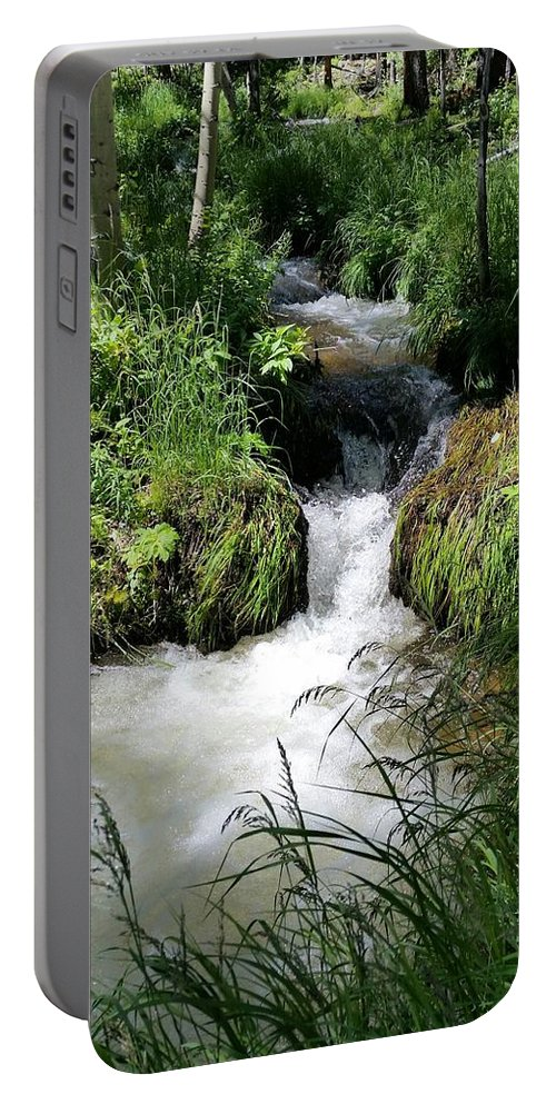 U.s. National Parks Portable Battery Charger featuring the photograph Mountain Stream by Dennis Boyd