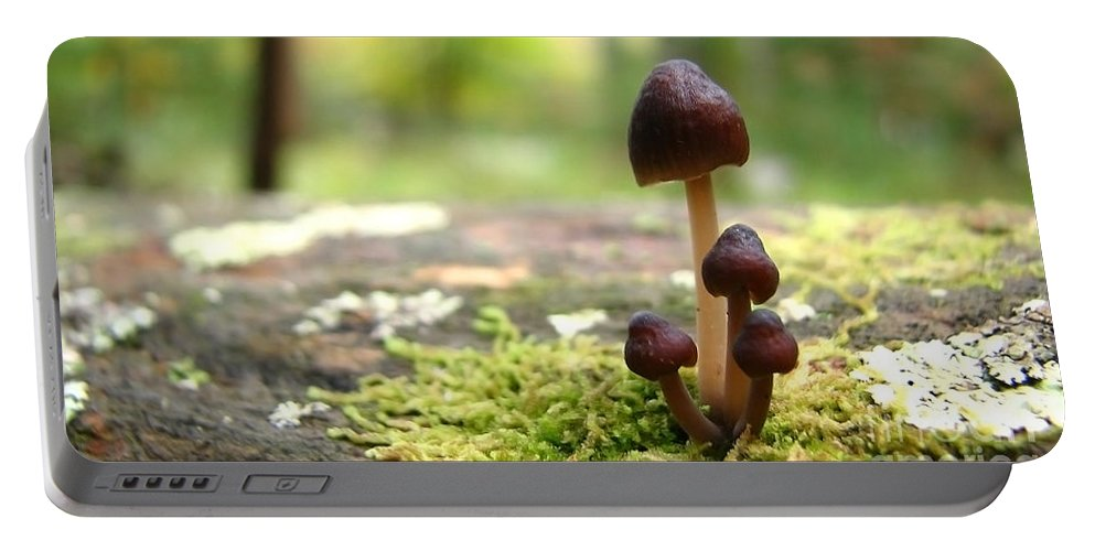 Macro Portable Battery Charger featuring the photograph Mushroom Cluster by Todd Blanchard