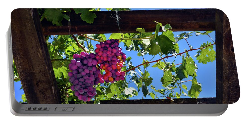 Inglenook Vineyard Portable Battery Charger featuring the photograph Napa Valley Inglenook Vineyard -2 by Tommy Anderson