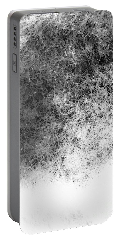 Abstract Portable Battery Charger featuring the photograph Nature Abstract by Gaspar Avila