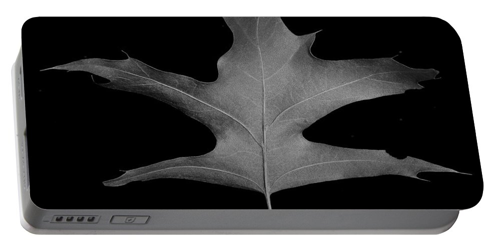 Oak Portable Battery Charger featuring the photograph Oak Leaf by David Stone