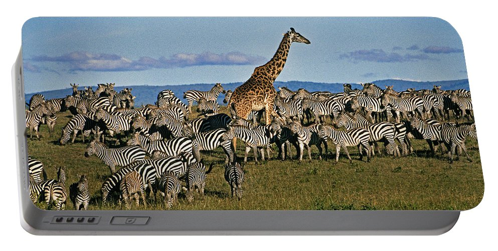 Africa Portable Battery Charger featuring the photograph Odd Man Out by Michele Burgess