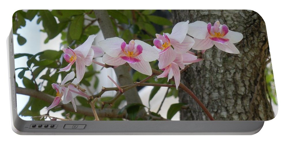 Portable Battery Charger featuring the photograph Orchid Bunch by Maria Bonnier-Perez