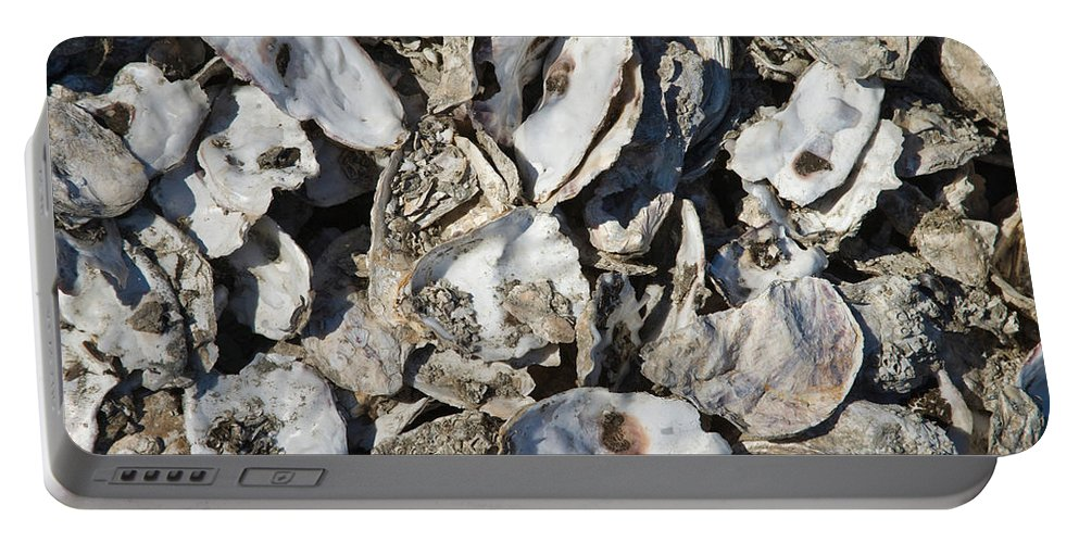 Oyster Portable Battery Charger featuring the photograph Oyster Shells by Inga Spence