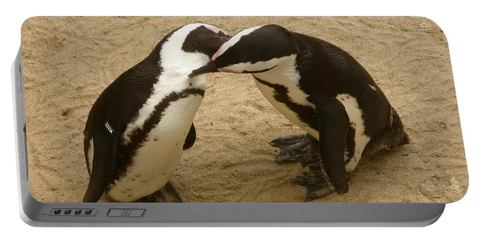 Penguin Portable Battery Charger featuring the photograph Penguins by FL collection