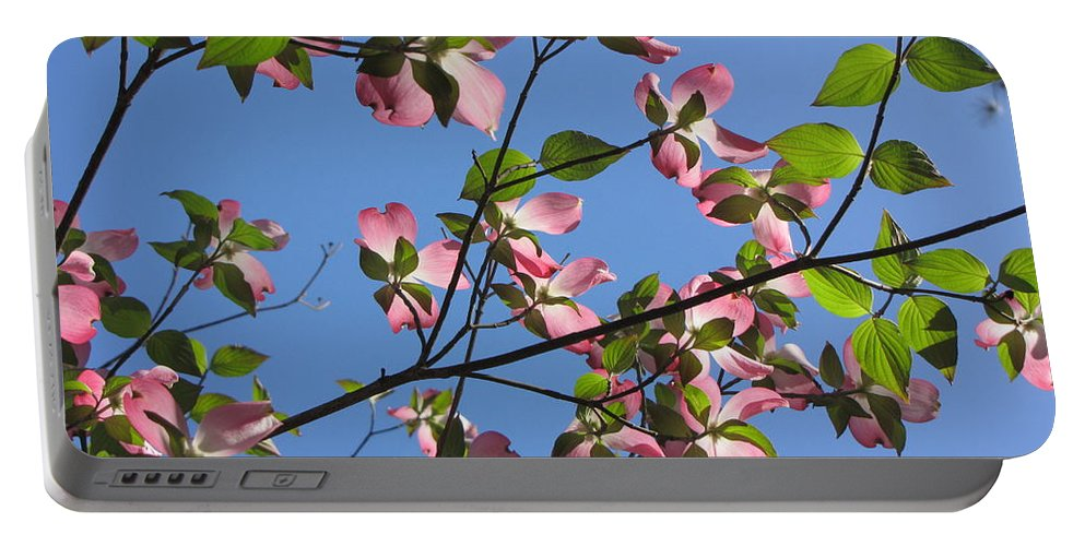 Tree Portable Battery Charger featuring the photograph Pink Dogwood by Sarah Houser