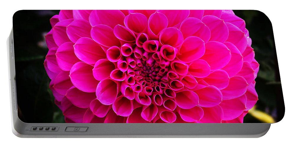 Flower Portable Battery Charger featuring the photograph Pink Flower by Anthony Jones