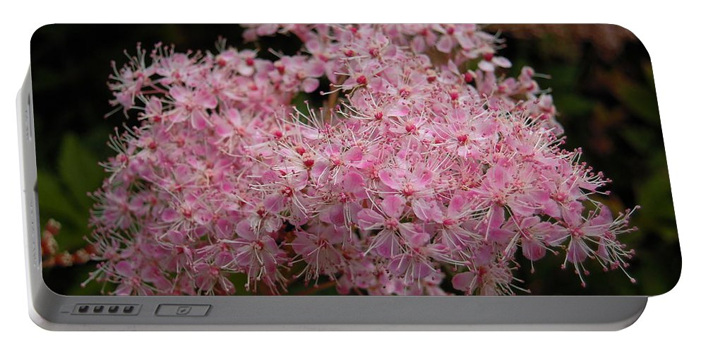 Pink Portable Battery Charger featuring the photograph Pink Flower by Svetlana Sewell