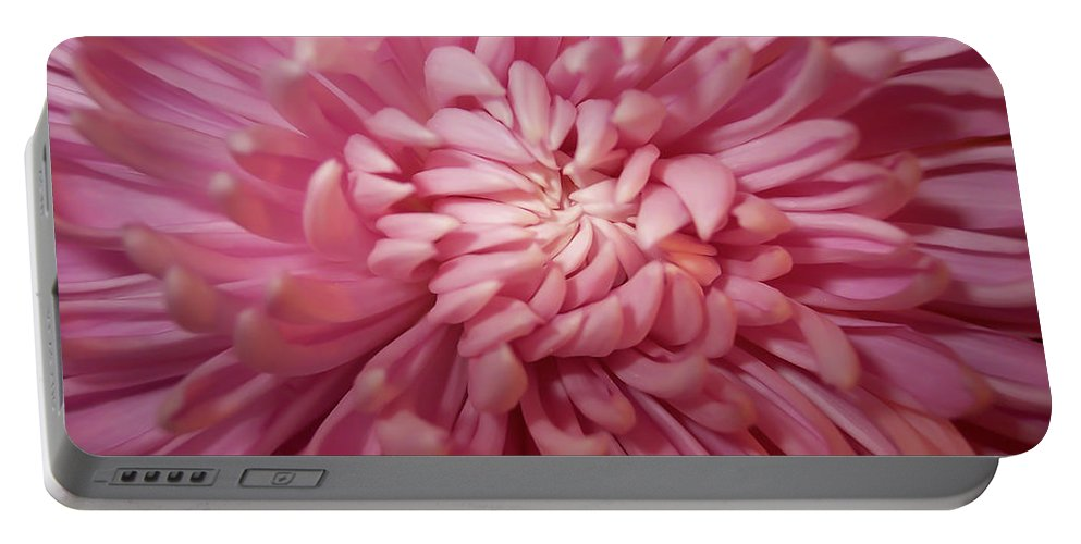 Flower Portable Battery Charger featuring the photograph Pink by Trish Tritz