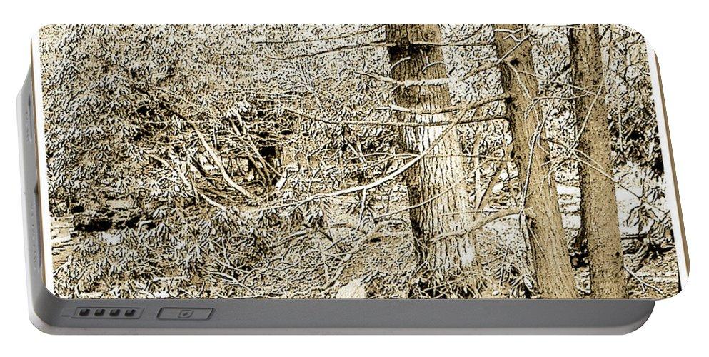 Pocono Mountains Portable Battery Charger featuring the photograph Pocono Mountain Stream, Pennsylvania, Digital Art by A Gurmankin