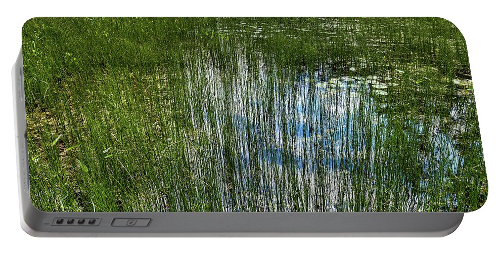 Pond Grasses Portable Battery Charger featuring the photograph Pond Grasses by David Patterson