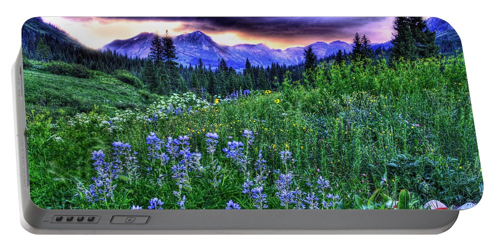 Colorado Portable Battery Charger featuring the photograph Purple Skies And Wildflowers by Scott Mahon
