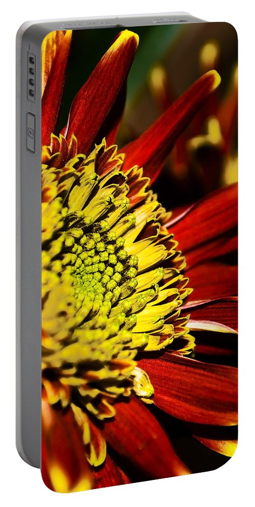 Pink Portable Battery Charger featuring the photograph Red by Svetlana Sewell