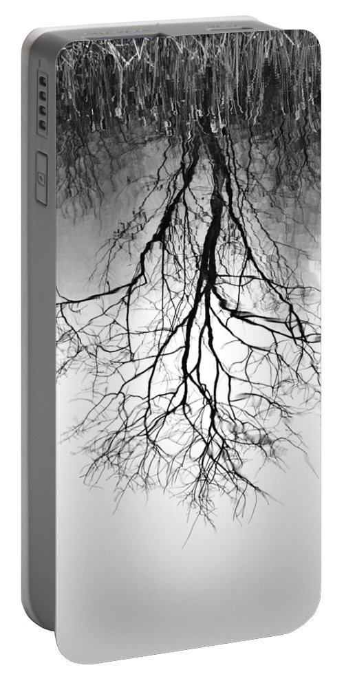 Tree Portable Battery Charger featuring the photograph Reflection by Lisa Kane