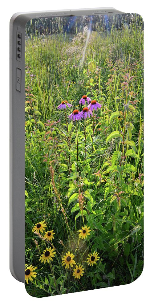 Black Eyed Susan Portable Battery Charger featuring the photograph Shelley Kelly Prairie Wildflowers by Ray Mathis