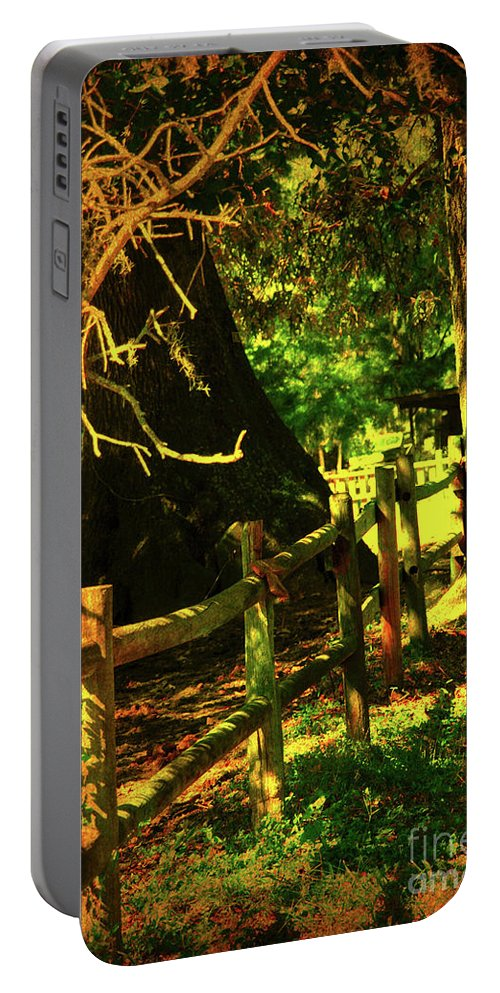 Fence Portable Battery Charger featuring the photograph Silence by Susanne Van Hulst