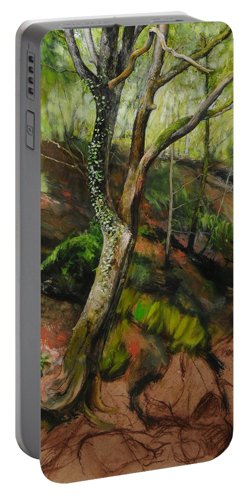 Landscape Portable Battery Charger featuring the painting Sketch Of A Treetrunk by Harry Robertson