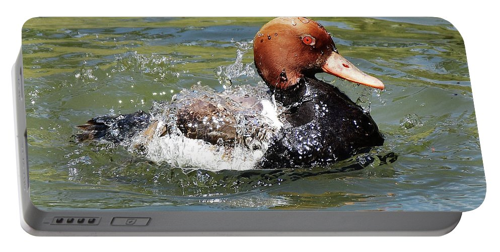Ann Keisling Portable Battery Charger featuring the photograph Splash Time by Ann Keisling
