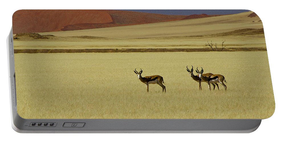 Africa Portable Battery Charger featuring the photograph Springbok At Sossusvlei by Michele Burgess