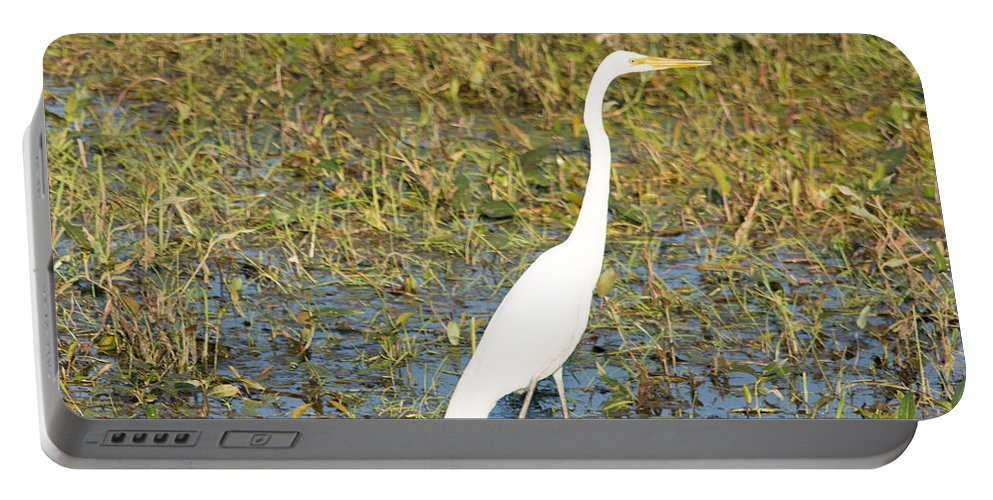 Great Egret Portable Battery Charger featuring the photograph Stand Straight by Linda Kerkau
