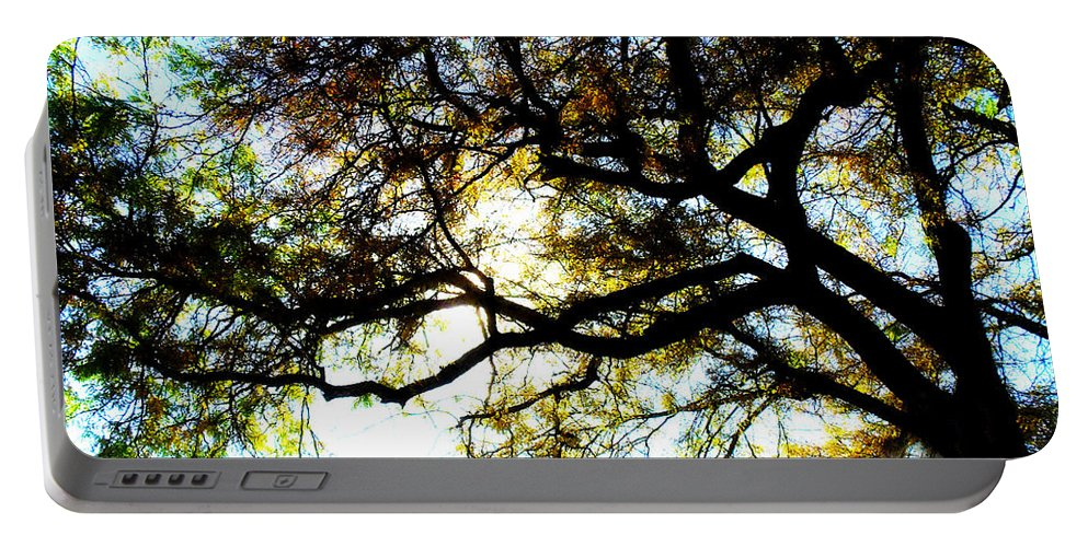 Trees Portable Battery Charger featuring the photograph Sunday Afternoon by Julie Hamilton