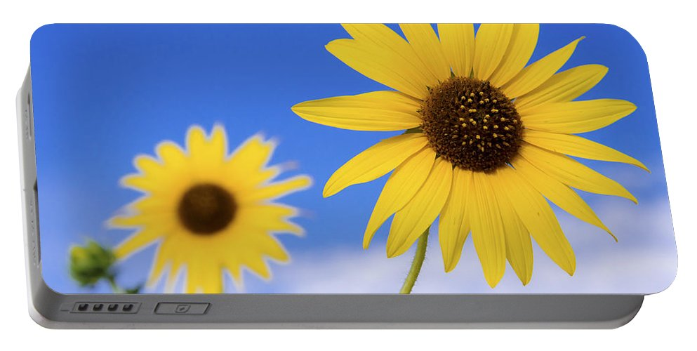 Chad Dutson Portable Battery Charger featuring the photograph Sunshine by Chad Dutson