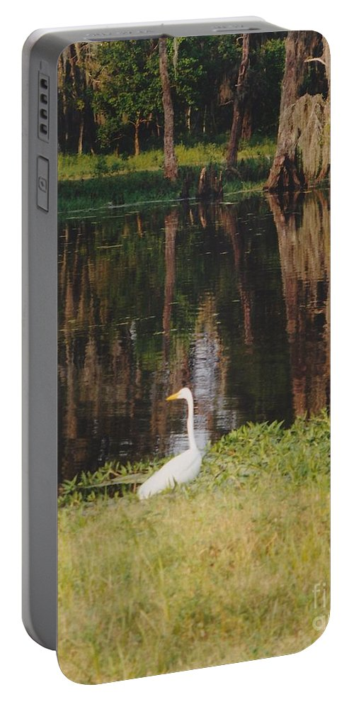 Landscape Portable Battery Charger featuring the photograph Swamp Bird by Michelle Powell