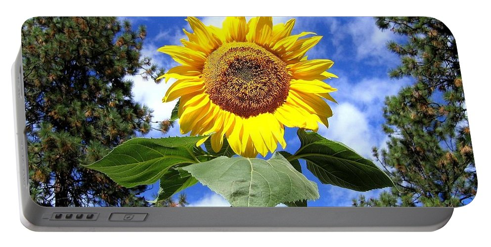 Sunflower Portable Battery Charger featuring the photograph Tall And Sunny by Will Borden