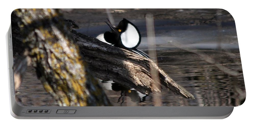 Hodded Portable Battery Charger featuring the photograph The Dance by Lori Tordsen