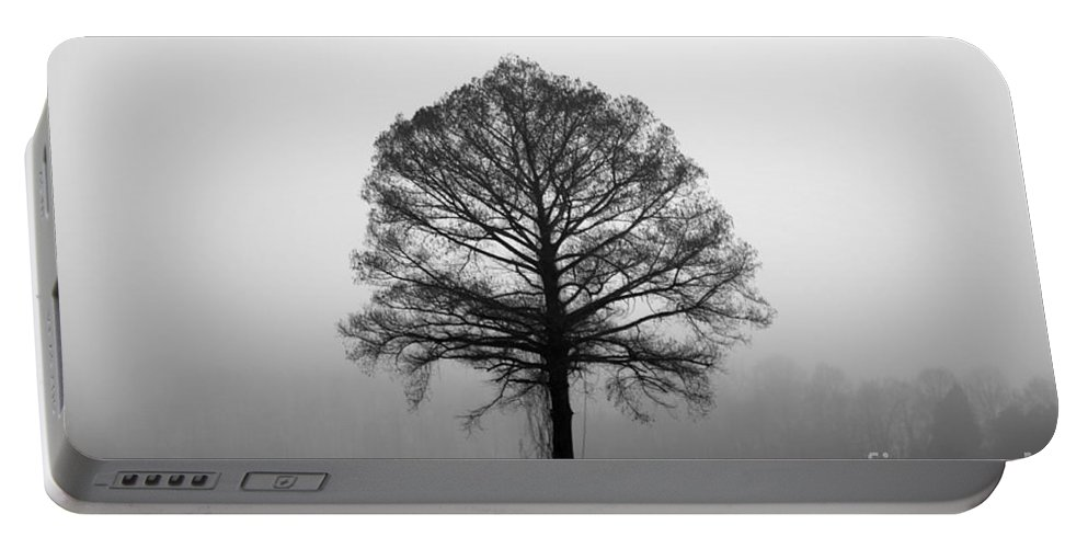Tree Portable Battery Charger featuring the photograph The Tree by Amanda Barcon