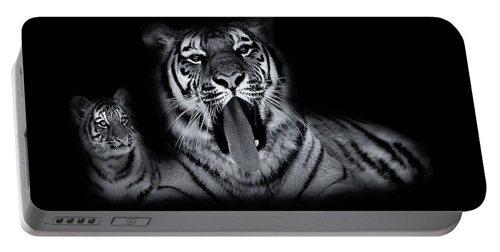 Tiger Portable Battery Charger featuring the photograph The Two Of Us by Phil Pace