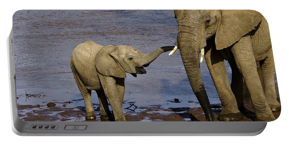 Africa Portable Battery Charger featuring the photograph This Is My Mother by Michele Burgess