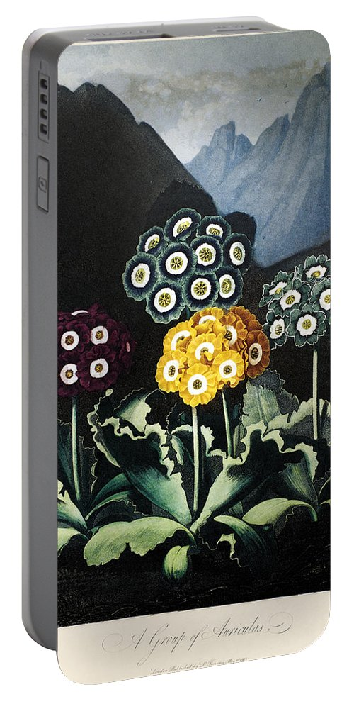 1807 Portable Battery Charger featuring the photograph Thornton: Auriculas by Granger