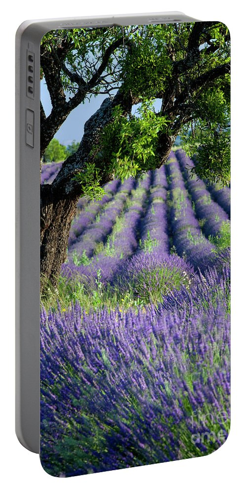 Agricultural Portable Battery Charger featuring the photograph Tree In Lavender by Brian Jannsen